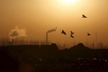 Trung Quốc: Nhà máy thép tại Đường Sơn giảm khẩn cấp nửa sản lượng