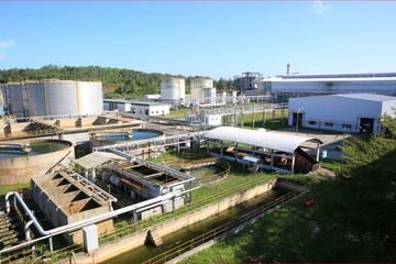 Nhà máy Nhiên liệu sinh học Dung Quất khởi động lại