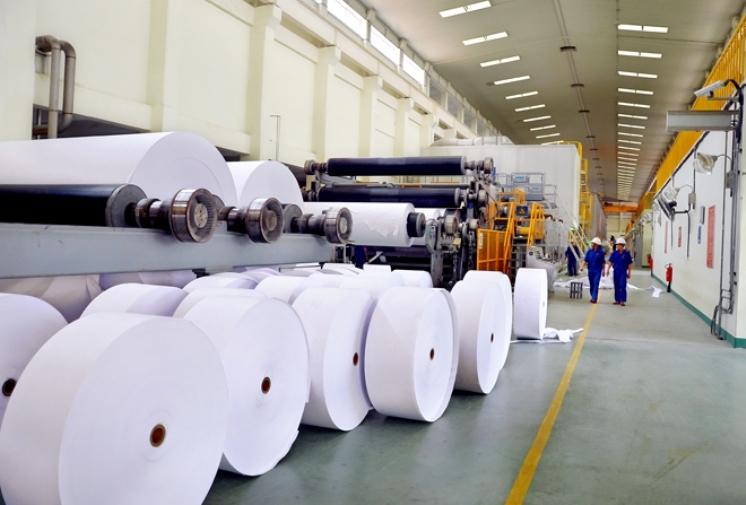 Kim ngạch xuất khẩu giấy Việt Nam dự kiến đạt trên 1 tỷ USD