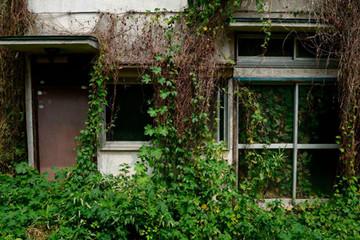 Những ngôi nhà 'ma' tặng không ở Nhật Bản