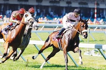 Hà Nội dự kiến mỗi năm thu 250 triệu USD thuế từ trường đua ngựa