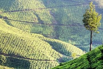 30 địa danh đẹp nhất Ấn Độ