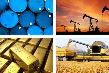 Thị trường hàng hóa 20/12: Dầu giảm trở lại, thép tiếp đà tăng