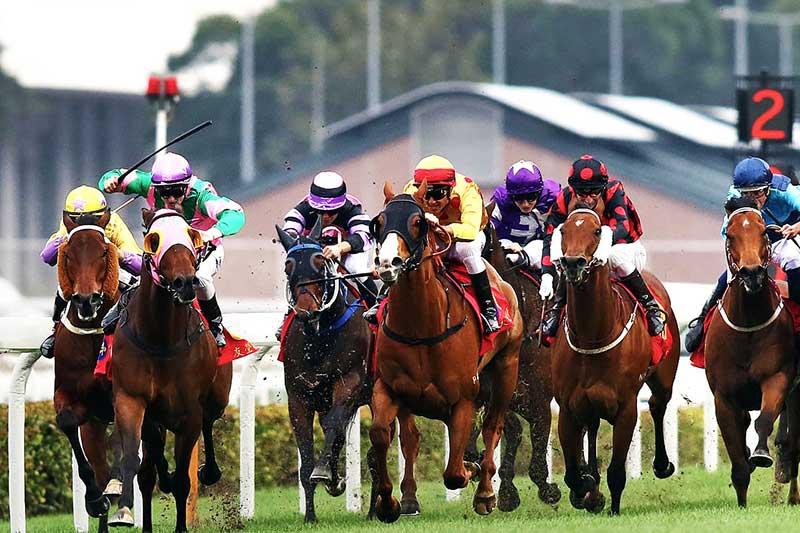 Thủ tướng đồng ý cho Hà Nội mở trường đua ngựa