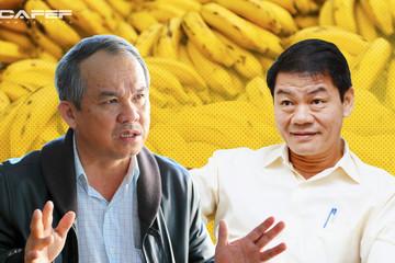 HAGL Agrico (HNG) miễn nhiệm 6 Phó Tổng, Thaco tiếp tục đưa người vào ban lãnh đạo