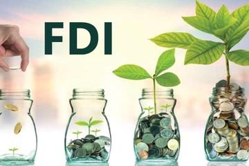 Sau khi hút 6,6 tỷ USD, địa ốc 2019 dự báo tiếp tục hút vốn nước ngoài