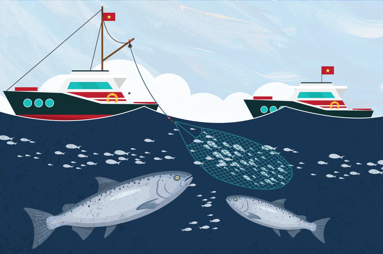 Chuyện ngành thủy sản 2018: Chiếc thẻ vàng