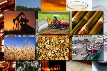 Thị trường hàng hóa 9/1: Dầu thô, đường, cao su lập đỉnh mới