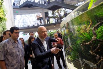 Nửa lao động ở Washington muốn bỏ việc để làm cho Amazon