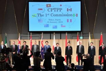 Các nước CPTPP họp phiên đầu tiên thông qua 4 quyết định quan trọng