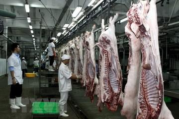 TP HCM đầu tư nhà máy hiện đại, quyết đóng cửa các lò giết mổ thủ công
