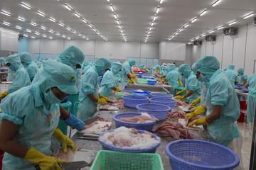 Nhật Bản xóa bỏ 86% thuế quan từ Việt Nam, thủy sản về 0%