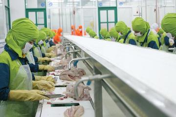 Biên lợi nhuận gộp tăng mạnh, Hùng Vương báo lãi 22 tỷ trong quý I/2019