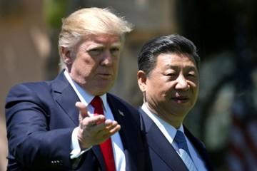 Trump tuyên bố không gặp Tập Cận Bình trước hạn chót đàm phán thương mại