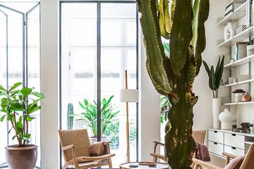 Bên trong ngôi nhà 90 m2 ở Barcelona cải tạo từ công trình tối tăm