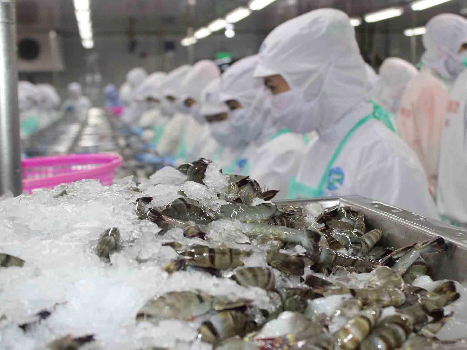 Năm nay, ngành tôm có những thuận lợi và thách thức gì?