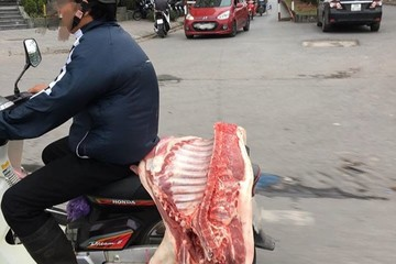Nguy cơ dịch tả lợn châu Phi 'Nam tiến' bởi giá chênh lệch quá cao