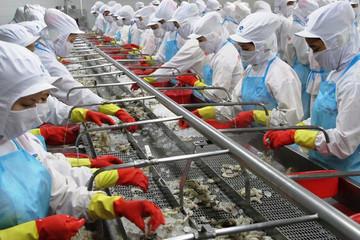 Minh Phú lãi hợp nhất 824 tỷ đồng năm 2018, đạt 83% kế hoạch