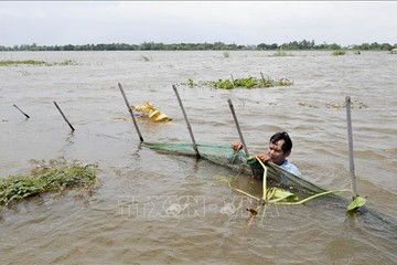 Vùng đồng bằng sông Cửu Long có nguy cơ chìm hoàn toàn vào năm 2100