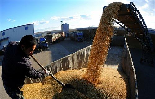 Nông dân Trung Quốc xoay xở tìm phao cứu sinh khi chính phủ tăng nhập hàng Mỹ