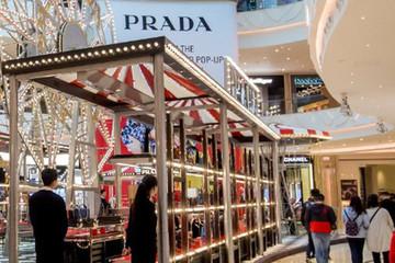 Prada mất 864 triệu USD trong một ngày vì giới nhà giàu Trung Quốc bớt vung tay chi tiêu