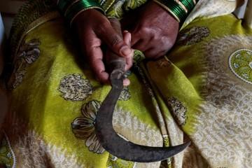 Từ nông trường đến khu ổ chuột, phụ nữ Ấn Độ rơi vào khủng hoảng nghề nghiệp