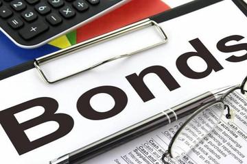 Tài chính Hoàng Huy phát hành gần 600 tỷ đồng trái phiếu chuyển đổi cho hai nhà đầu tư nước ngoài