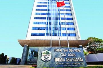 HAG chưa nhận được quyết định thu hồi 742 ha đất từ Chính phủ Campuchia