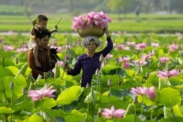 Quảng Ninh vẫn số 1, Đồng Tháp vượt Đà Nẵng đứng số 2 về năng lực cạnh tranh cấp tỉnh