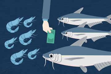 Ít đơn hàng xuất khẩu, giá cá tra, tôm nguyên liệu giảm hơn 10% trong tháng 3