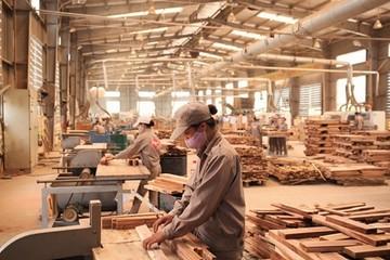 Gỗ Việt giành thị phần thành công với Trung Quốc tại Mỹ