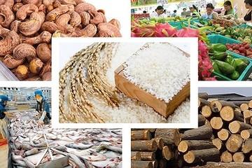 Nhiều tín hiệu tích cực cho nông sản Việt