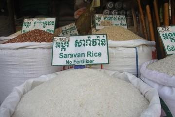 Campuchia sẽ khởi kiện EU liên quan các mức thuế nhập khẩu gạo