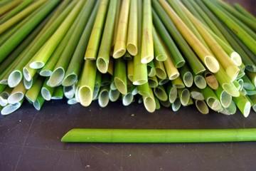 Người đàn ông Việt Nam chế ống hút từ cỏ, giúp giải quyết vấn đề rác thải nhựa