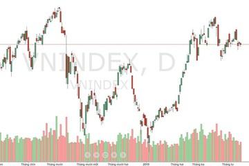 Xu thế dòng tiền: Yếu tố hỗ trợ nào đủ sức kích thích thị trường?