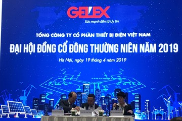 ĐHĐCĐ GEX: Sẽ xây khách sạn 5 sao và 6 sao tại số 10 Trần Nguyên Hãn