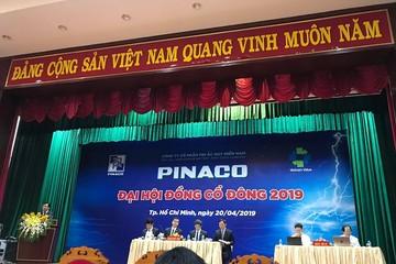 ĐHĐCĐ PAC: Kế hoạch 2019 đi lùi, chuẩn bị thoái vốn Nhà nước