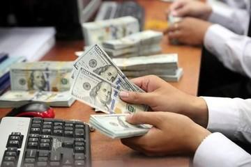 Giá USD trung tâm liên tiếp lập kỷ lục mới