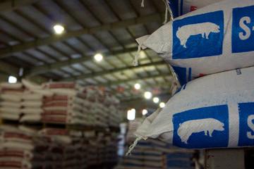 Họp ĐHCĐ Dabaco: Cơ hội khi tổng đàn lợn giảm và kỳ vọng giá phục hồi nửa cuối năm