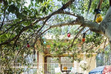 Ngôi nhà nhiều màu sắc, đẹp và trẻ trung ở Australia