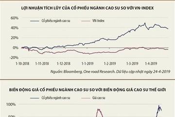 Cổ phiếu cao su tăng... không nhờ cao su
