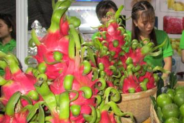 Ngò tàu, thanh long Việt bị Nhật 'soi' vì nhiễm thuốc bảo vệ thực vật