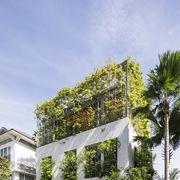 'Khu rừng nhiệt đới' bên trong ngôi nhà ở TP HCM