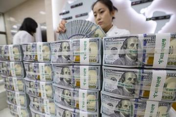 Giá USD ngân hàng đồng loạt giảm sâu