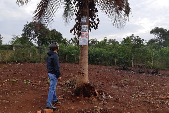 Giá đất Buôn Ma Thuột hỗn loạn vì 'cò'