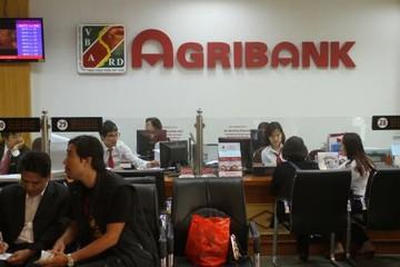 Kiểm toán Nhà nước: 5 trên 6 công ty con của Agribank lỗ luỹ kế 2017