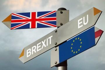 Liên minh châu Âu: Anh không có nhiều lựa chọn về Brexit