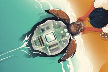 Bỏ giấc mơ Mỹ, 'rùa biển' Đông Nam Á về nước khởi nghiệp