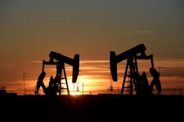 Cửa ngõ giao hàng tại Mỹ bị lụt, giá dầu WTI tăng gần 1%
