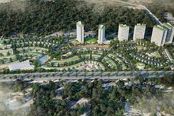 Cò đất tạo sốt 'ảo', hàng loạt dự án BĐS ở Bình Thuận bị 'sờ gáy'